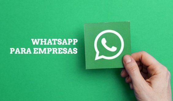 O WhatsApp como grande aliado do seu negócio: confira estratégias de uso do aplicativo